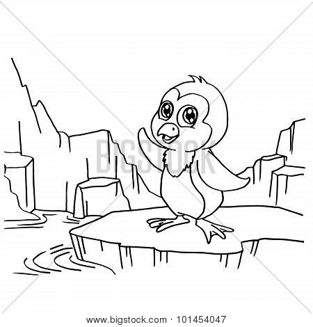 Penguins Coloring Pages vector