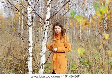 The Girl Among Young Birches In The Autumn