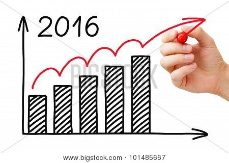 Growth Graph Year 2016 Concept