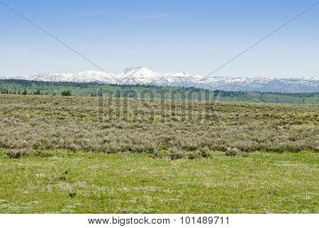 Island Park Idaho