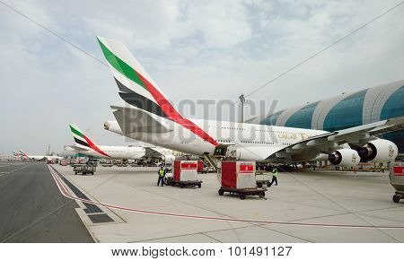 DUBAI, UAE - JUNE 23, 2015: Airbus A380 docked in Dubai airport. Dubai International Airport is an international airport serving Dubai.