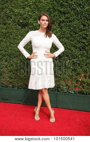 LOS ANGELES - SEP 12:  Amy Landecker at the Primetime Creative Emmy Awards Arrivals at the Microsoft Theater on September 12, 2015 in Los Angeles, CA