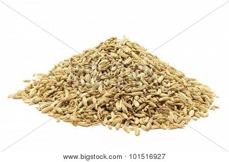 Pile of Organic Fennel seed.