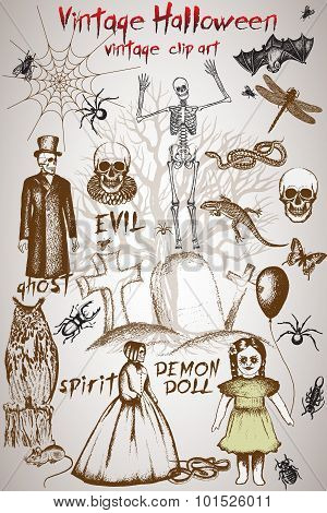 Vintage clip art for halloween design