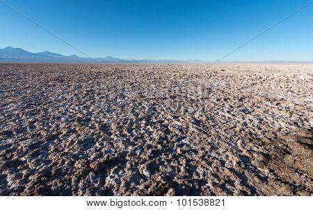 Salt flats at Laguna Chaxa, Atacama desert