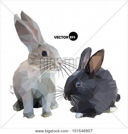 The hare and the rabbit black and white isolated on white background.