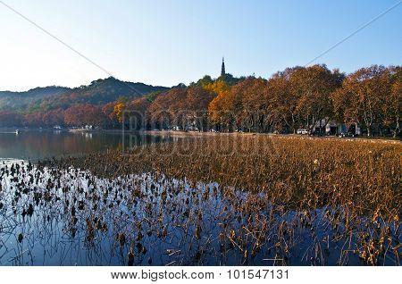China Hangzhou West Lake autumn