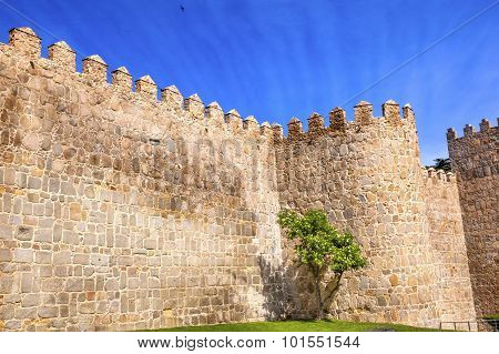 Avila Town Castle Walls Turret  Swallows Castile Spain