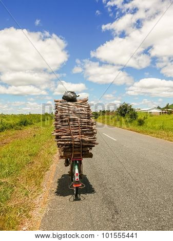 Man On Bicycle In Malawi