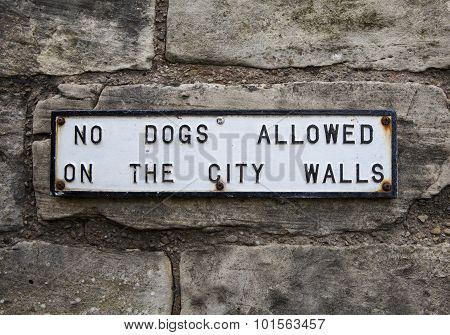 No Dogs Allowed On The City Walls