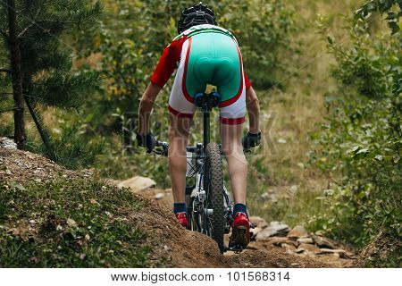 mountainbiker down among stones