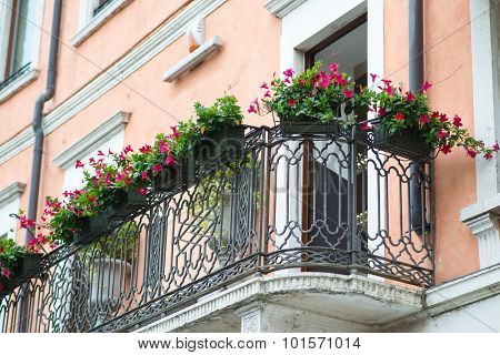 Window sill with flowers