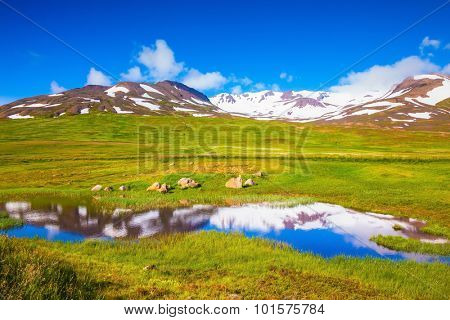 Summer Iceland. Around a lot of fresh green grass. The hills are covered with snow and are reflected in a small lake