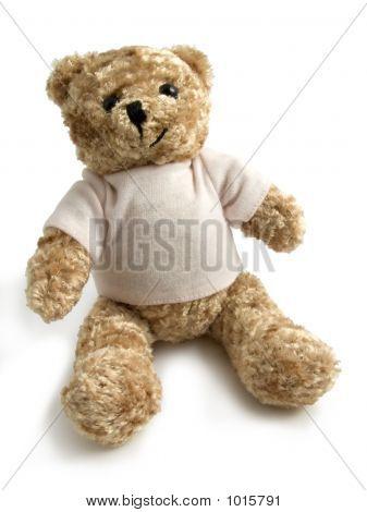 Bear A Toy_1