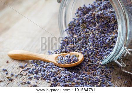 Dry Lavender Tea Closeup. Selective Focus.