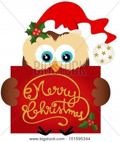 Christmas owl holding a Merry Christmas