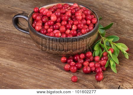 Cowberry Lingonberry cup on wooden table