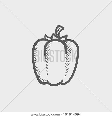 Bell pepper sketch icon for web, mobile and infographics. Hand drawn vector dark grey icon isolated on light grey background.