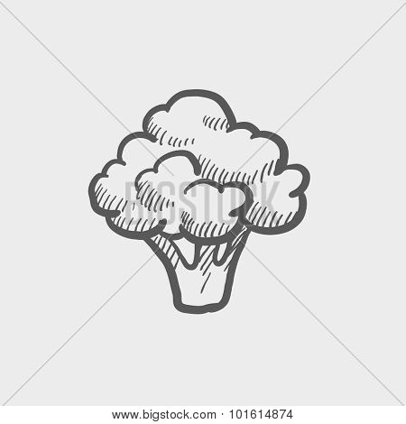 Broccoli sketch icon for web, mobile and infographics. Hand drawn vector dark grey icon isolated on light grey background.