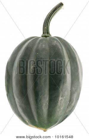 grüne Pumpkin isolated on white Background.