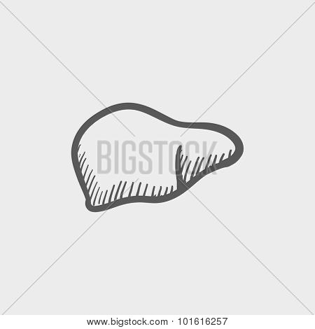 Liver sketch icon for web, mobile and infographics. Hand drawn vector dark grey icon isolated on light grey background.