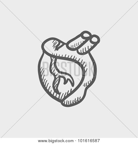 Heart sketch icon for web, mobile and infographics. Hand drawn vector dark grey icon isolated on light grey background.