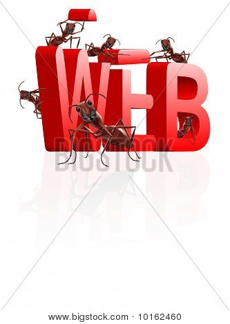 Web Website Under Construction