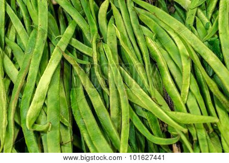 Closeup Of Fresh Green Runner Beans
