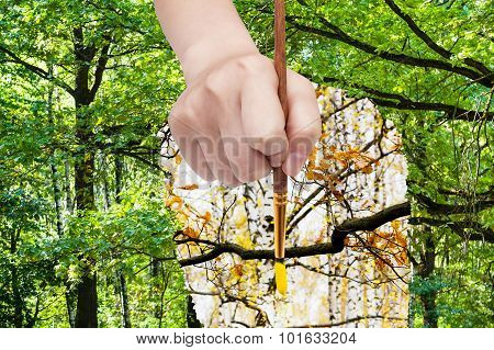 Paintbrush Paints Yellow Leaves On Oak Branch