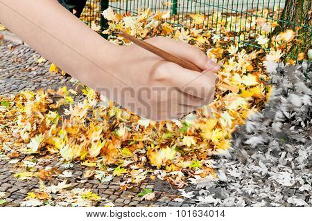Paintbrush Paints Fallen Yellow Leaves On Street