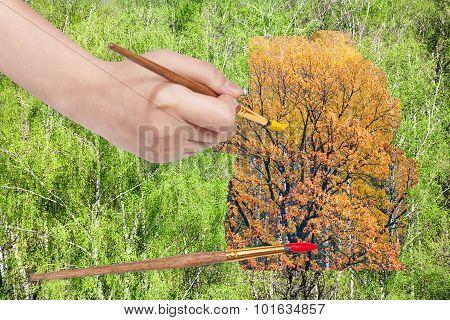 Paintbrush Paints Yellow Autumn Oak In Green Woods