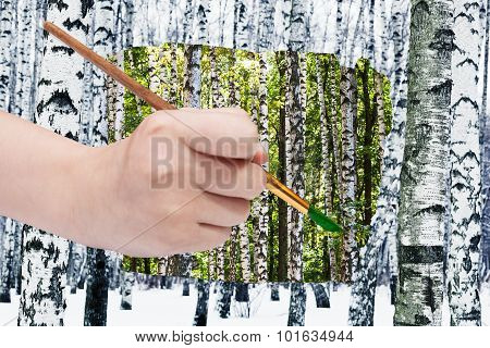 Paintbrush Paints Green Leaves On Birches