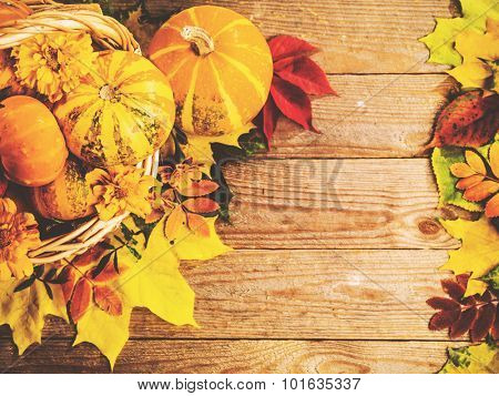 Autumn background with colorful leaves and pumpkins on rustic wooden board. Gifts of Autumn in a  basket. Thanksgiving and Halloween holidays concept. Harvest rural fall season. Space for your text.