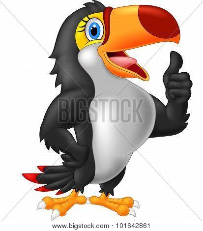 Cartoon toucan gives thumb up. vector illustration