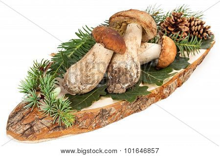 ceps on cutting board