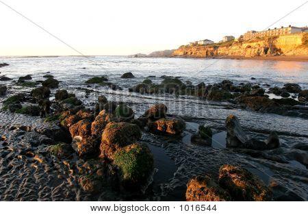 Ocean Front Property 3