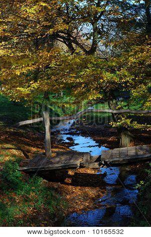 Corriente y puente de madera
