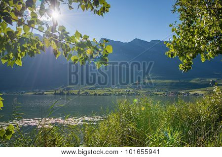 lake landscape with sun over mountains shining through tree