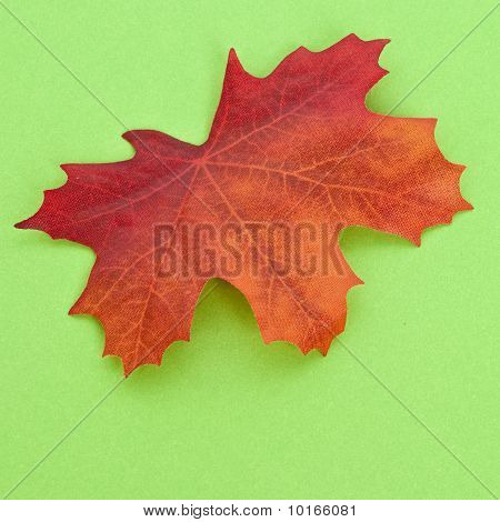 Autumn Leaf On A Vibrant Green Background