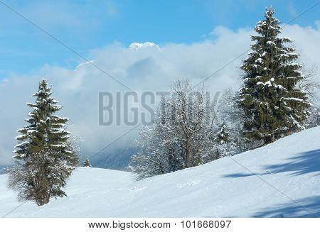 Winter Mountain Landscape (austria, Bavaria).