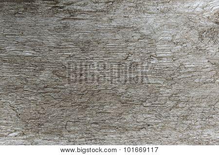 old pine board closeup