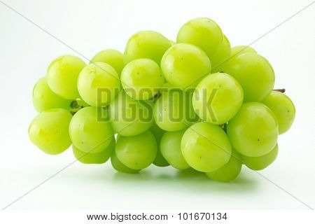 Plump green grape or muscat grape, isolated on natural white background.