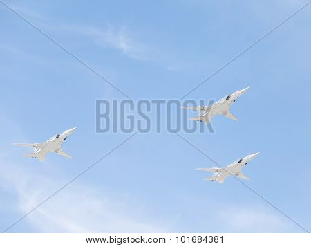 White Swans On The Victory Day Parade