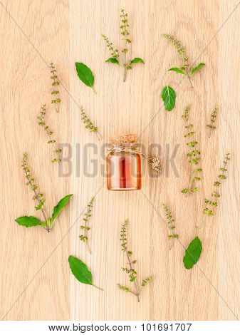 Bottle Of Essential Oil With Holy Basil Leaf And Flower On Wooden Background.