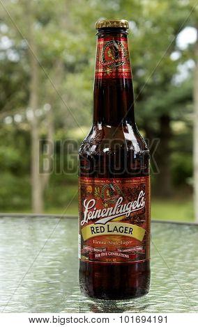Red Lager Bottle