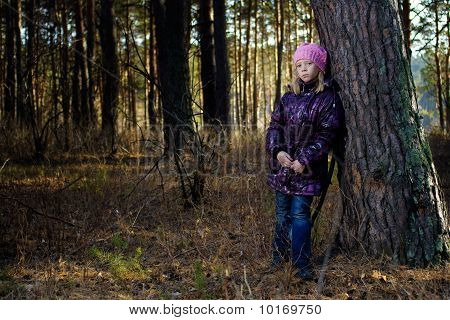 The Girl In An Autumn Wood