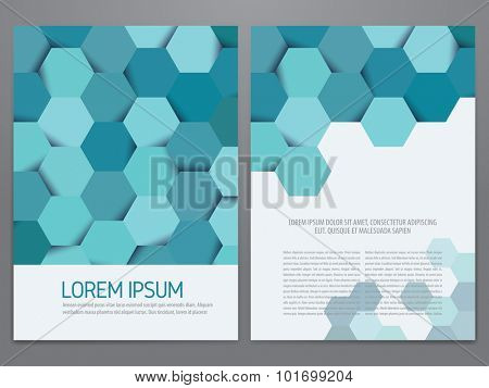 Brochure, annual report, flyer, magazine cover vector template. Modern hexagon pattern corporate design.
