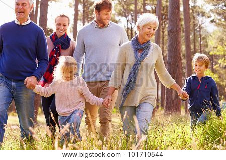 Happy multi-generation family walking in the countryside