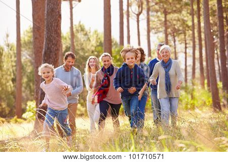 Multi-generation family walking in countryside, kids running