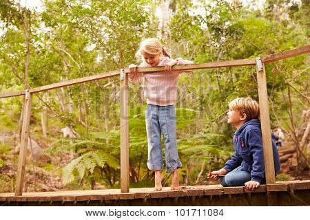 Young siblings playing on a bridge in a forest